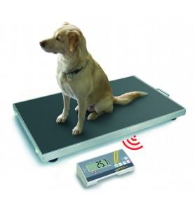 EOS-F wireless a scala di animali