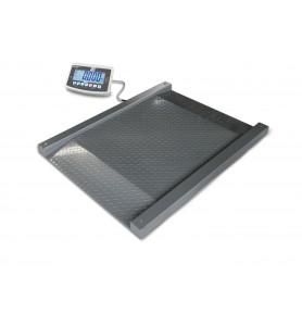 Bilancia carrabile KERN NFB fino a 600 kg
