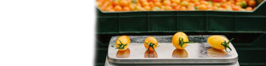 Waagen und Maschinen für die Lebensmittelverarbeitung für Gastronomie